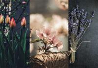 Картинки на тему весна